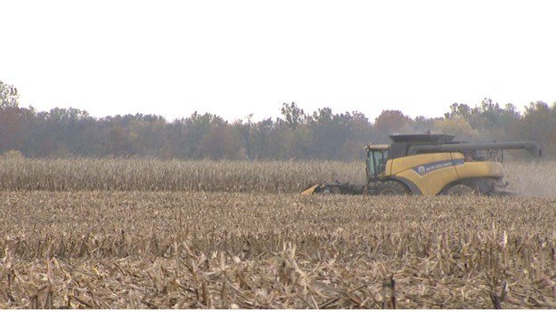 IL gov declares harvest emergency to help crop transit