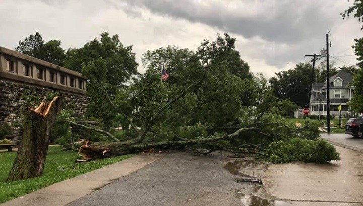 Severe weather hits southern Illinois, damage reported
